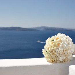 image white-hydrangea-roses-jpg