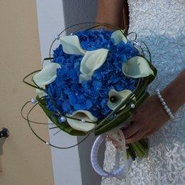 image callas-blue-hydrangea-jpg