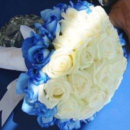 image blue-white-roses-jpg