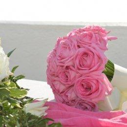 image rose-roses-jpg