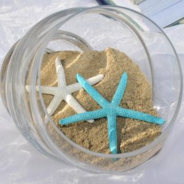 image shell-with-starfish-ans-sand-jpg
